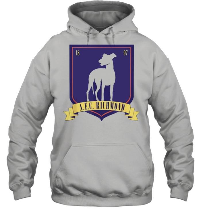 afc richmond logo unisex hoodie